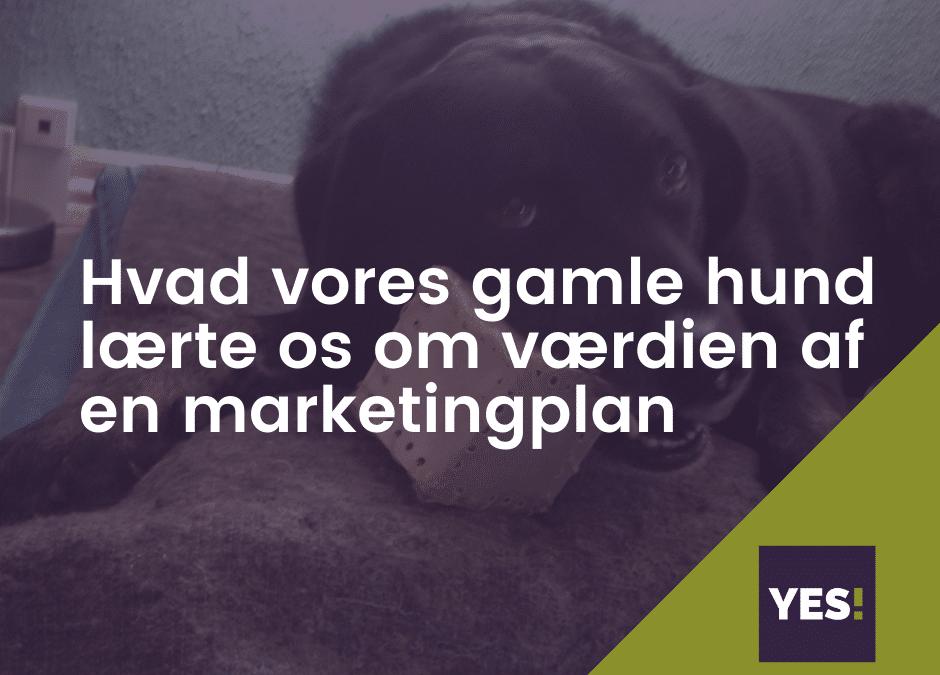 Hvad vores gamle hund lærte os om vigtigheden af en god marketingplan!